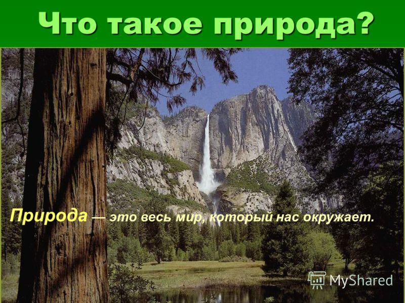 Такое природа природа это весь мир