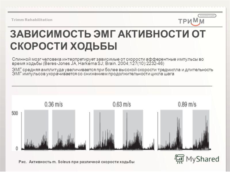 ЗАВИСИМОСТЬ ЭМГ АКТИВНОСТИ ОТ СКОРОСТИ ХОДЬБЫ Спинной мозг человека интерпретирует зависимые от скорости афферентные импульсы во время ходьбы (Beres-Jones JA, Harkema SJ; Brain. 2004;127(10):2232-46) ЭМГ средняя амплитуда увеличивается при более высо