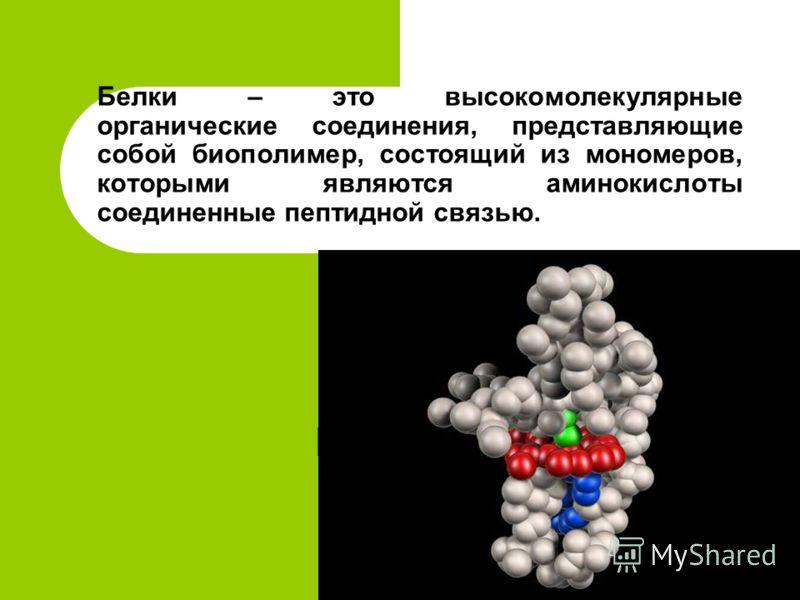 Белки – это высокомолекулярные органические соединения, представляющие собой биополимер, состоящий из мономеров, которыми являются аминокислоты соединенные пептидной связью.