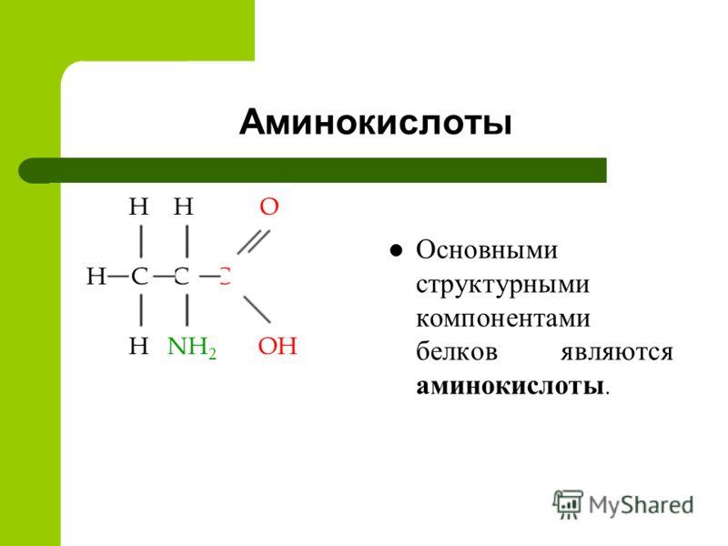 Аминокислоты H H O H C C C H NH 2 OH Основными структурными компонентами белков являются аминокислоты.
