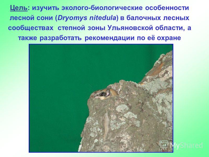 Цель: изучить эколого-биологические особенности лесной сони (Dryomys nitedula) в балочных лесных сообществах степной зоны Ульяновской области, а также разработать рекомендации по её охране