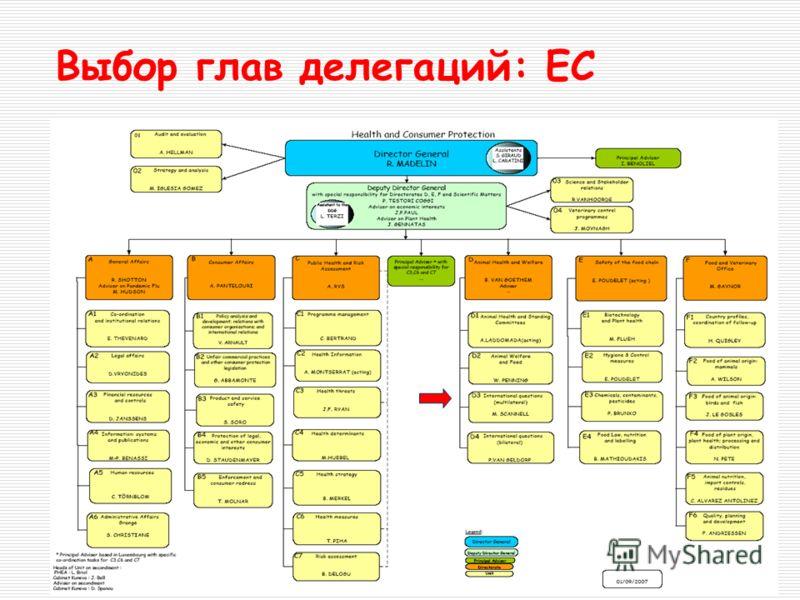 Выбор глав делегаций: EC