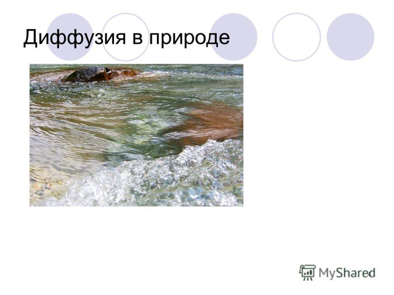 4 Диффузия в природе