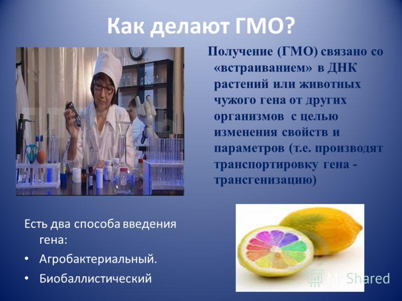 Как делают ГМО? Есть два способа введения гена: Агробактериальный. Биобаллистический Получение (ГМО) связано со «встраиванием» в ДНК растений или животных чужого гена от других организмов с целью изменения свойств и параметров (т.е. производят трансп