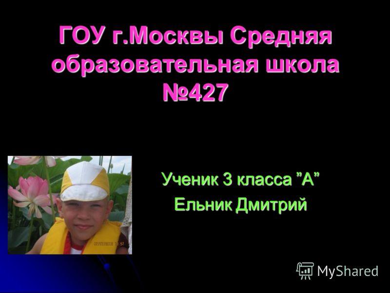 Ученик 3 класса А Ельник Дмитрий ГОУ г.Москвы Средняя образовательная школа 427
