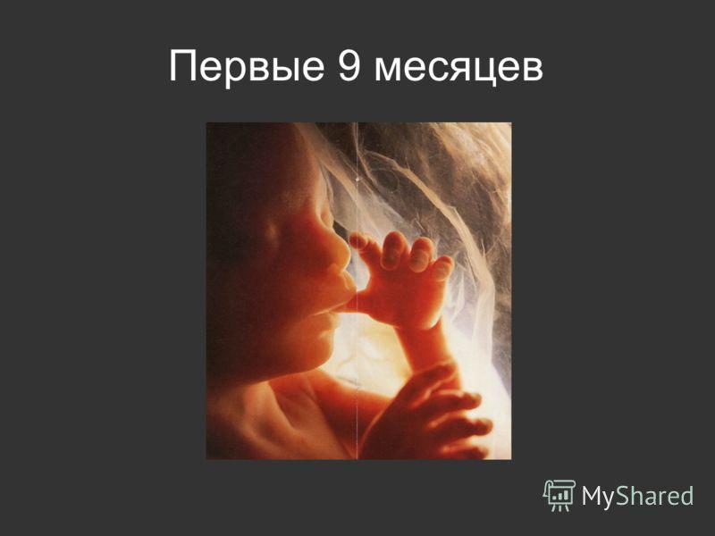 Первые 9 месяцев