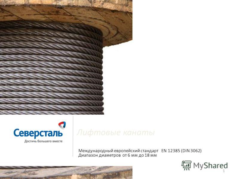 1 Лифтовые канаты Международный европейский стандарт EN 12385 (DIN 3062) Диапазон диаметров от 6 мм до 18 мм