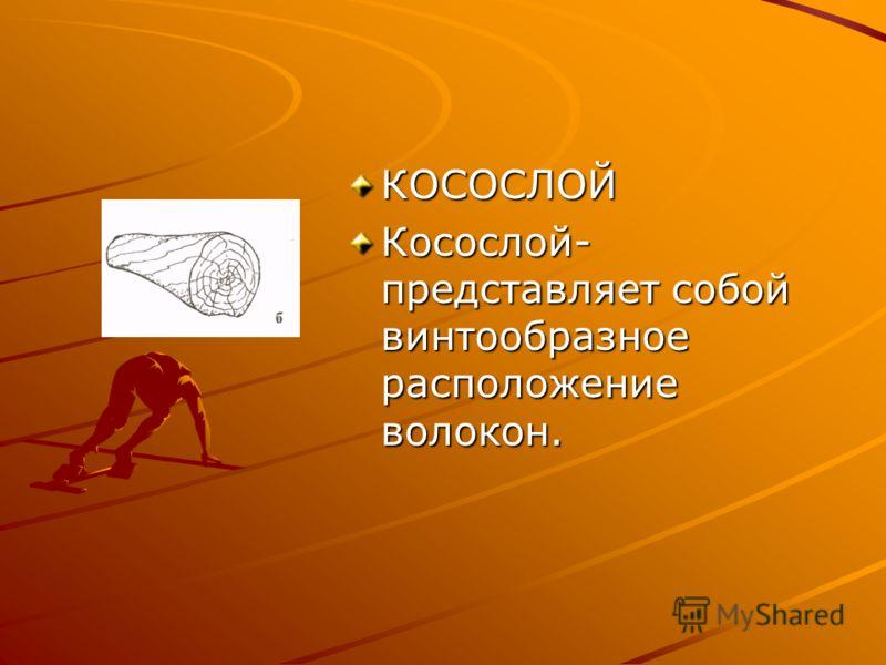 КОСОСЛОЙ Косослой- представляет собой винтообразное расположение волокон.