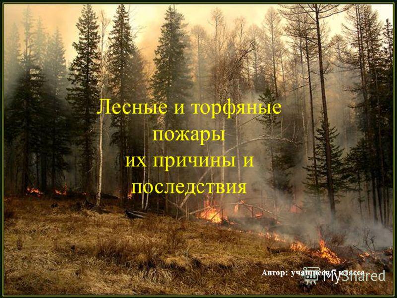 Лесные и торфяные пожары их причины и