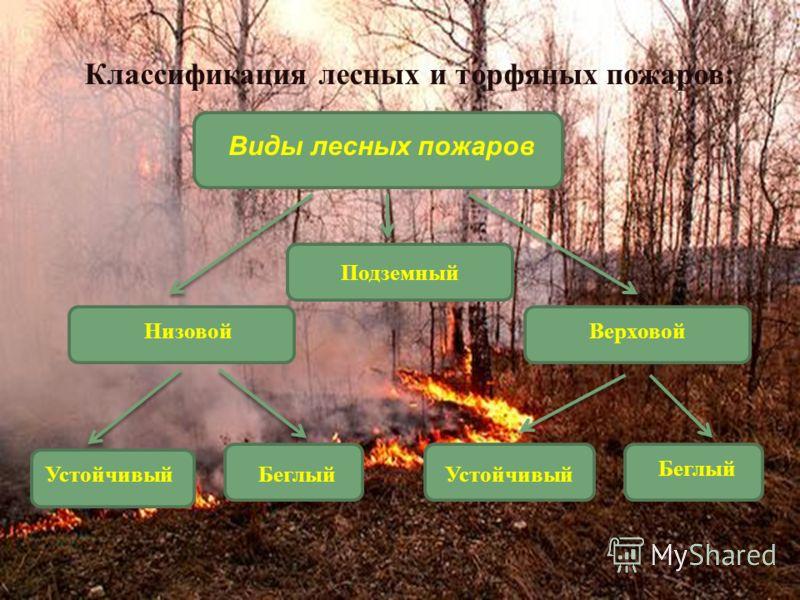 Подземный Классификация лесных и торфяных пожаров: Виды лесных пожаров НизовойВерховой УстойчивыйБеглыйУстойчивый Беглый