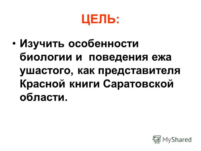 ЦЕЛЬ: Изучить особенности биологии и поведения ежа ушастого, как представителя <a href='http://www.myshared.ru/theme/prezentatsiya-krasnaya-kniga/' ti