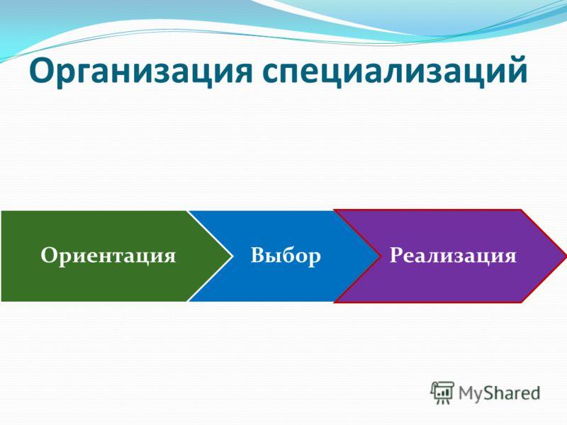 Организация специализаций ОриентацияВыборРеализация