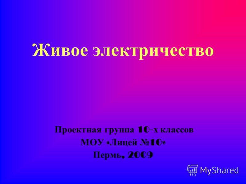 Живое электричество Проектная группа 10- х классов МОУ « Лицей 10» Пермь, 2009