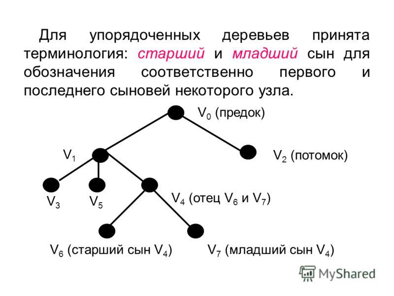 V3V3 V5V5 V1V1 Для упорядоченных деревьев принята терминология: старший и младший сын для обозначения соответственно первого и последнего сыновей некоторого узла. V 0 (предок) V 2 (потомок) V 4 (отец V 6 и V 7 ) V 6 (старший сын V 4 )V 7 (младший сын