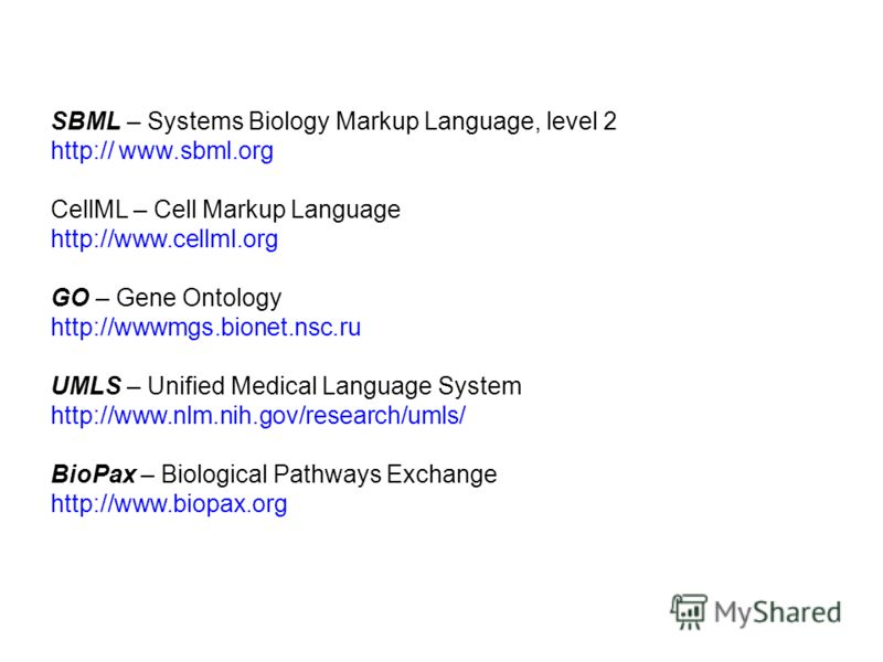SBML – Systems Biology Markup Language, level 2 http:// www.sbml.org CellML – Cell Markup Language http://www.cellml.org GO – Gene Ontology http://wwwmgs.bionet.nsc.ru UMLS – Unified Medical Language System http://www.nlm.nih.gov/research/umls/ BioPa