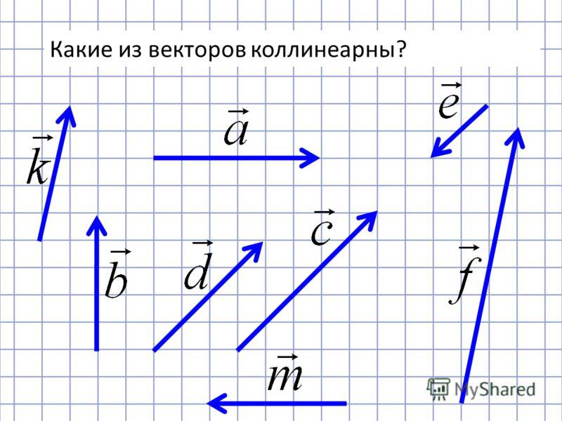 Какие из векторов коллинеарны?