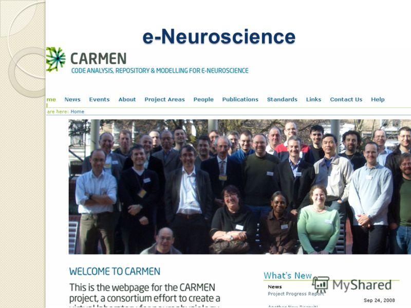 e-Neuroscience