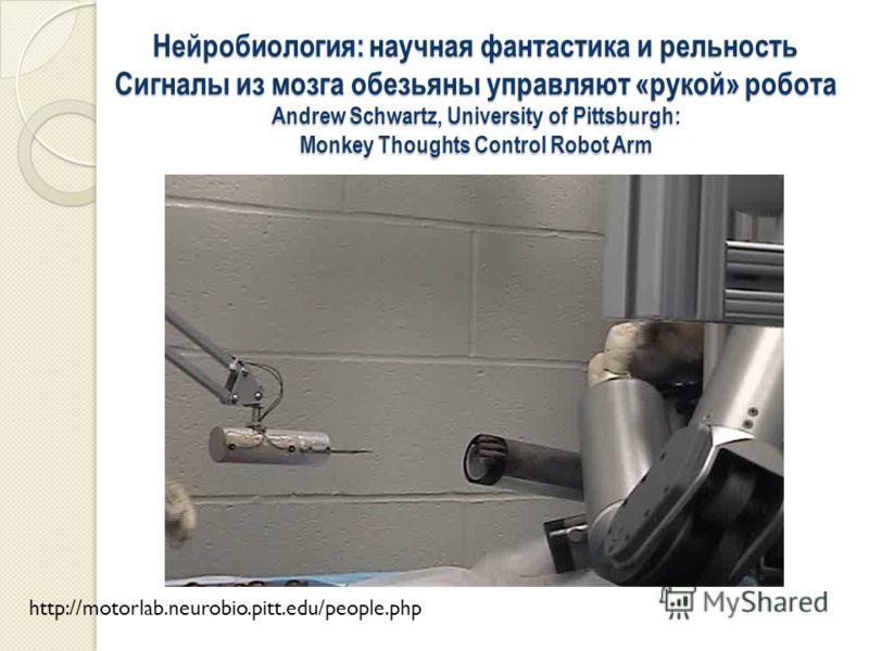 Нейробиология: научная фантастика и рельность Сигналы из мозга обезьяны управляют «рукой» робота Andrew Schwartz, University of Pittsburgh: Monkey Thoughts Control Robot Arm http://motorlab.neurobio.pitt.edu/people.php