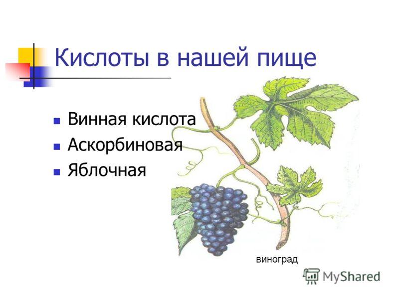Кислоты в нашей пище Винная кислота Аскорбиновая Яблочная виноград