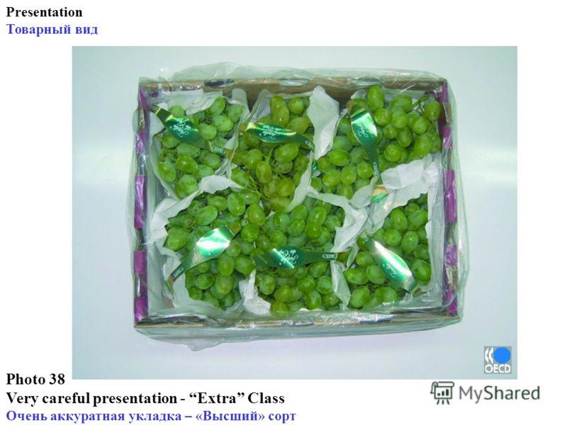 Photo 38 Very careful presentation - Extra Class Очень аккуратная укладка – «Высший» сорт Presentation Товарный вид