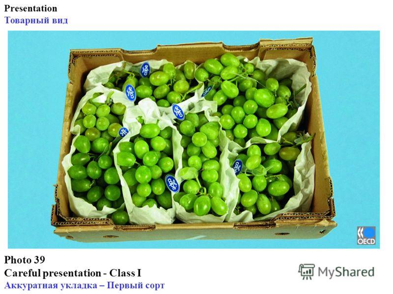 Photo 39 Careful presentation - Class I Аккуратная укладка – Первый сорт Presentation Товарный вид