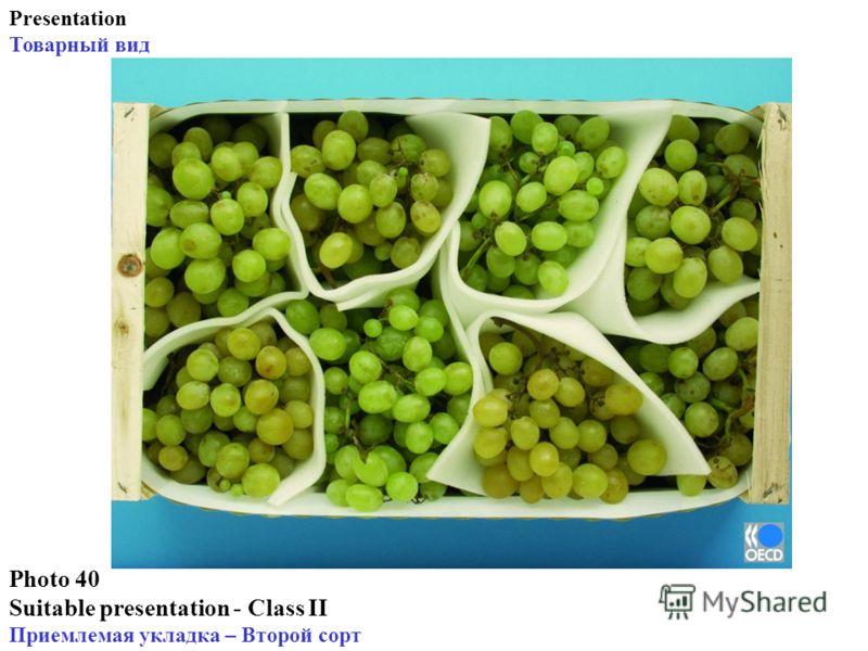 Photo 40 Suitable presentation - Class II Приемлемая укладка – Второй сорт Presentation Товарный вид