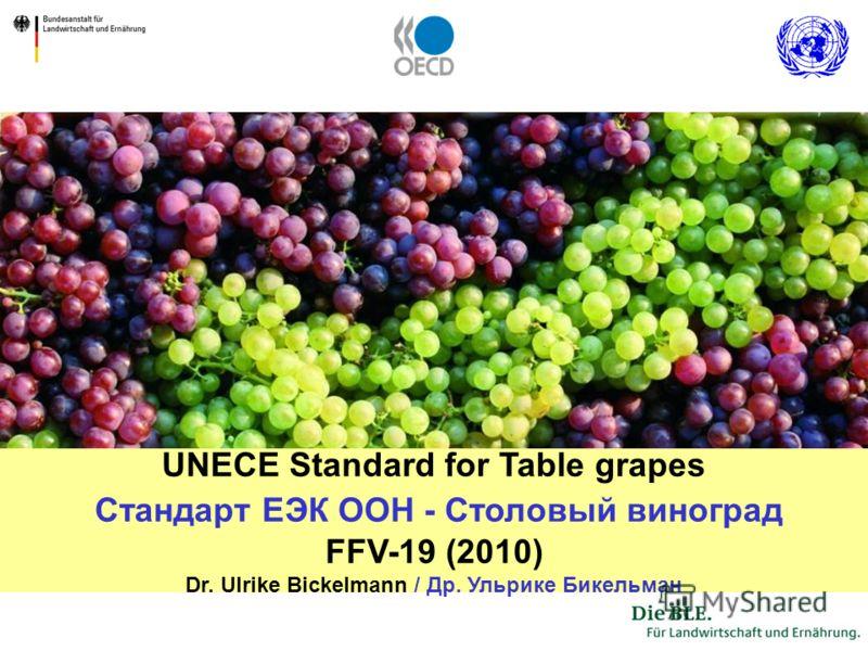 1 UNECE Standard for Table grapes Стандарт ЕЭК ООН - Столовый виноград FFV-19 (2010) Dr. Ulrike Bickelmann / Др. Ульрике Бикельман
