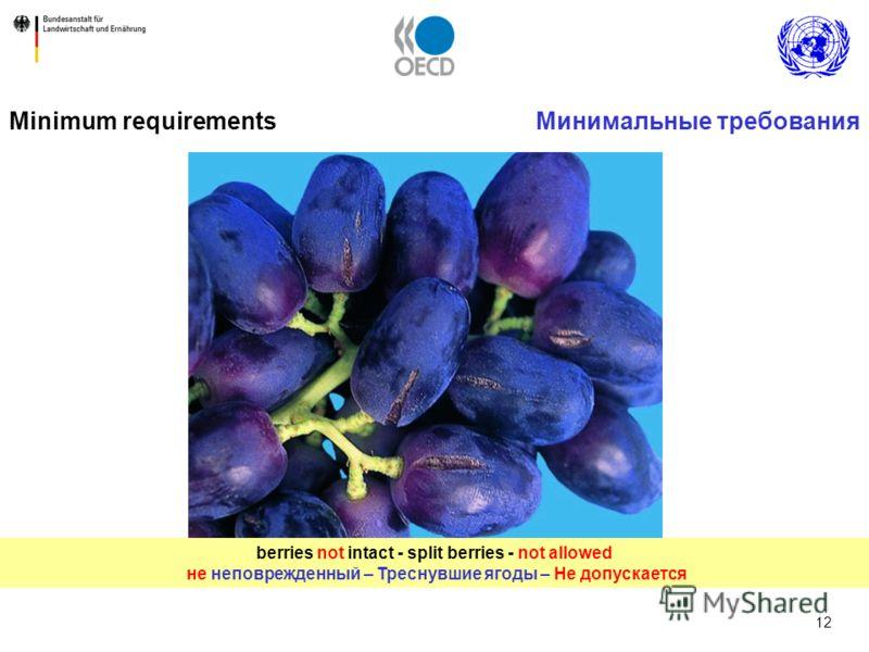 12 berries not intact - split berries - not allowed не неповрежденный – Треснувшие ягоды – Не допускается Minimum requirementsМинимальные требования
