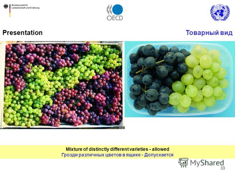 33 Mixture of distinctly different varieties - allowed Грозди различных цветов в ящике - Допускается PresentationТоварный вид