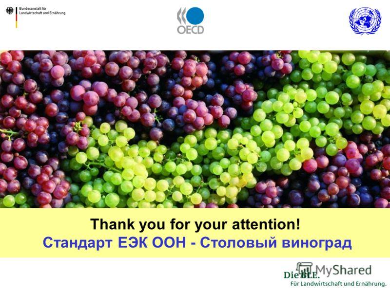 38 Thank you for your attention! Стандарт ЕЭК ООН - Столовый виноград