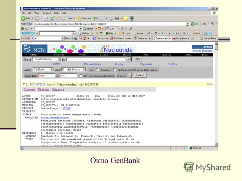 Окно GenBank