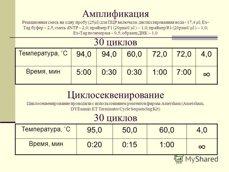 Амплификация Реакционная смесь на одну пробу (25µl) для ПЦР включала: дистиллированная вода - 17,4 µl; Ex- Tag буфер – 2,5; смесь dNTP – 2,0; праймер F1 (20pmol/ µl ) – 1,0; праймер R1 (20pmol/ µl ) – 1,0; Ex-Tag полимераза – 0,5; образец ДНК – 1,0 3
