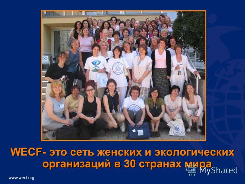 WECF- это сеть женских и экологических организаций в 30 странах мира