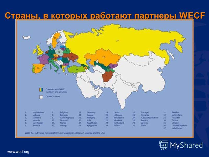 www.wecf.org Страны, в которых работают партнеры WECF