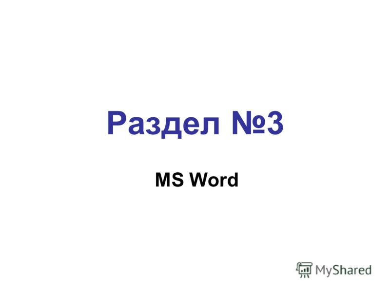 Раздел 3 MS Word