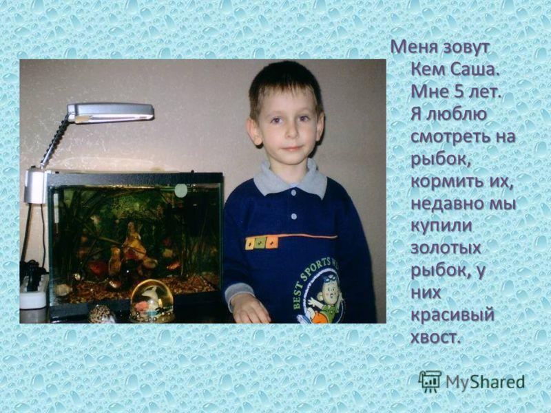 Меня зовут Кем Саша. Мне 5 лет. Я люблю смотреть на рыбок, кормить их, недавно мы купили золотых рыбок, у них красивый хвост.