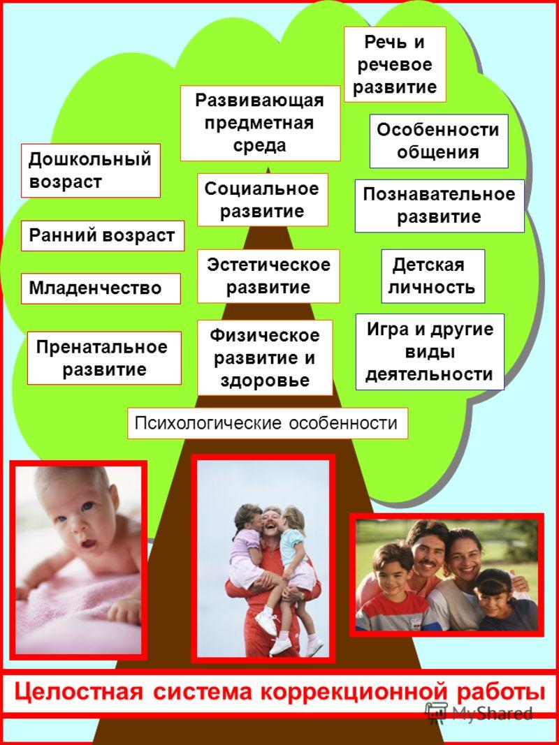 Ранний возраст Пренатальное развитие Младенчество Целостная система коррекционной работы Дошкольный возраст Особенности общения Познавательное развитие Детская личность Игра и другие виды деятельности Физическое развитие и здоровье Эстетическое разви