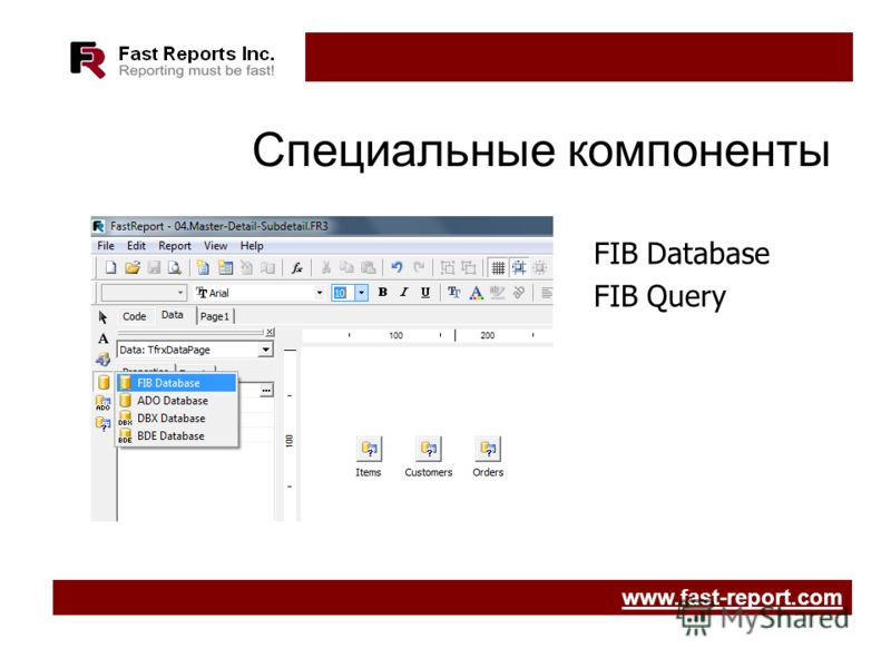 Специальные компоненты FIB Database FIB Query www.fast-report.com