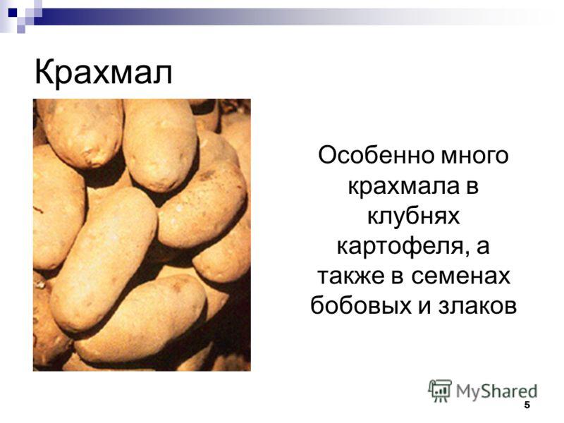 5 Крахмал Особенно много крахмала в клубнях картофеля, а также в семенах бобовых и злаков