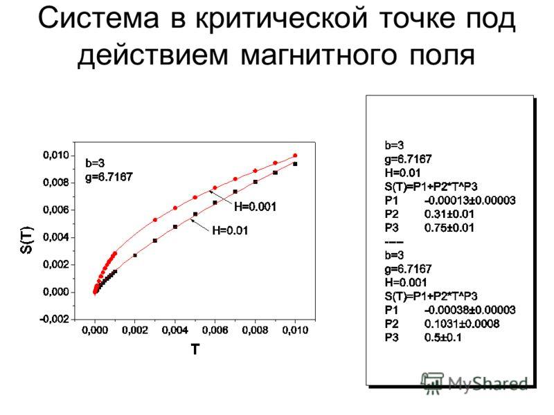 Система в критической точке под действием магнитного поля