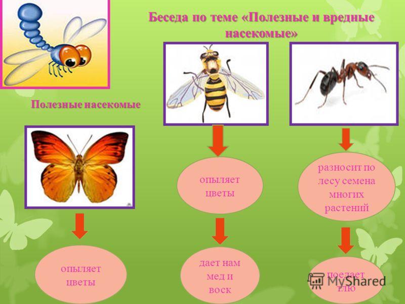Беседа по теме «Полезные и вредные насекомые» опыляет цветы дает нам мед и воск разносит по лесу семена многих растений поедает тлю опыляет цветы Полезные насекомые