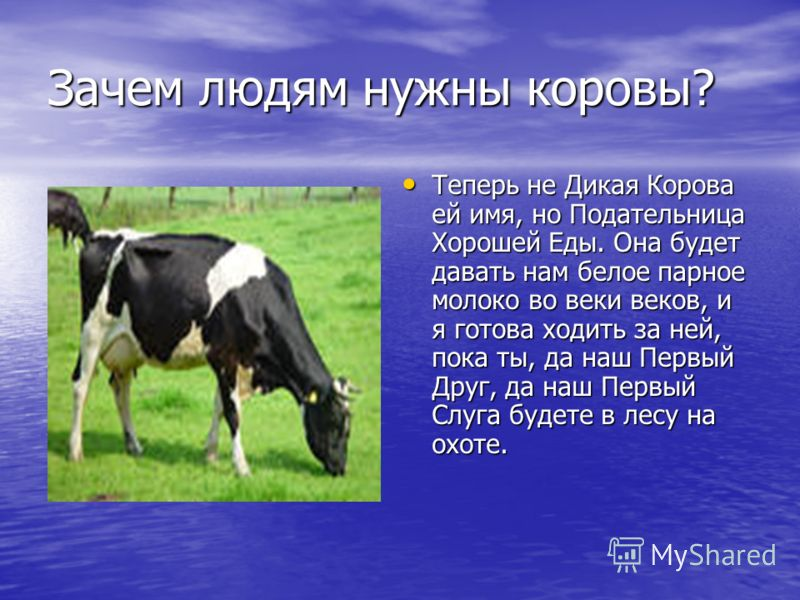 Зачем людям нужны коровы? Теперь не Дикая Корова ей имя, но Подательница Хорошей Еды. Она будет давать нам белое парное молоко во веки веков, и я готова ходить за ней, пока ты, да наш Первый Друг, да наш Первый Слуга будете в лесу на охоте. Теперь не