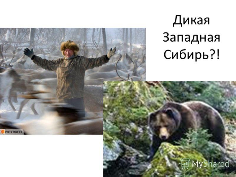 Дикая Западная Сибирь?!