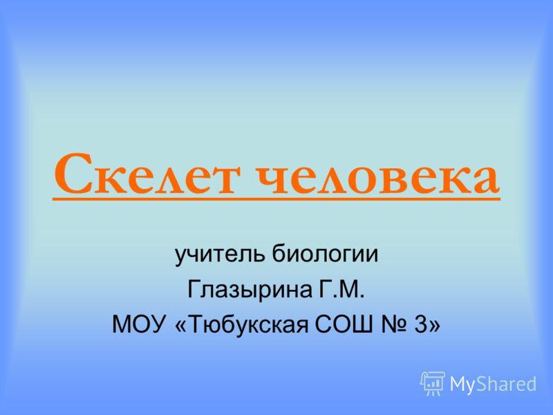 Скелет человека учитель биологии Глазырина Г.М. МОУ «Тюбукская СОШ 3»