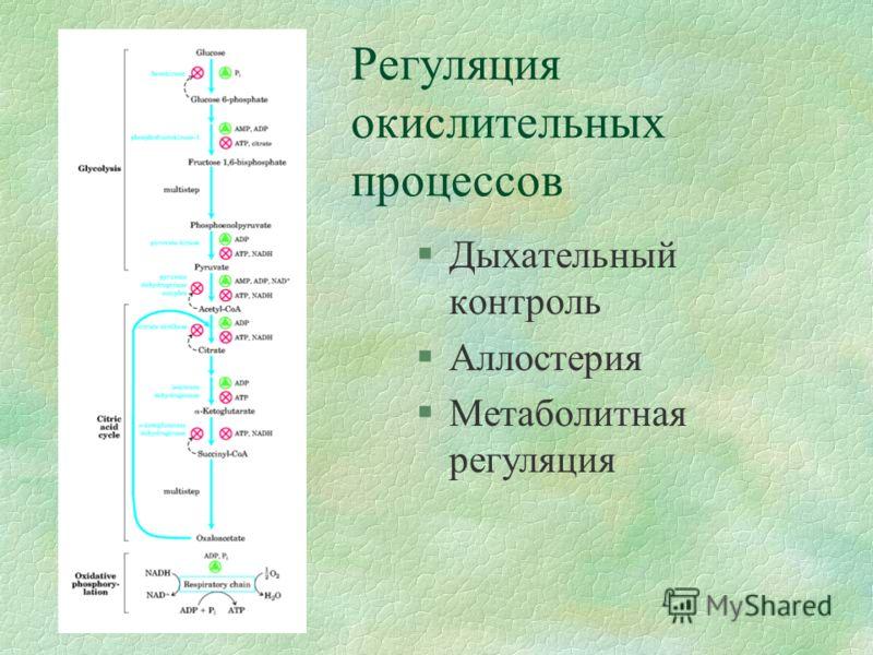 Регуляция окислительных процессов §Дыхательный контроль §Аллостерия §Метаболитная регуляция