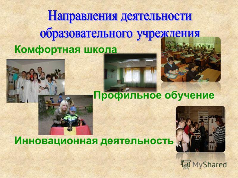 Комфортная школа Профильное обучение Инновационная деятельность