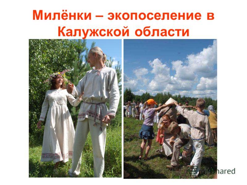 Милёнки – экопоселение в Калужской области