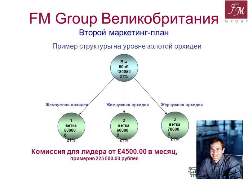 FM Group Великобритания Второй маркетинг-план Пример структуры на уровне золотой орхидеи 1 ветка 50000 б 21% Вы 50пб 180050 21% 2 ветка 60000 б 21% 3 ветка 70000 б 21% Комиссия для лидера от £4500.00 в месяц, примерно 225 000.00 рублей Жемчужная орхи