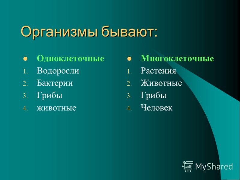 Организмы бывают: Одноклеточные 1. Водоросли 2. Бактерии 3. Грибы 4. животные Многоклеточные 1. Растения 2. Животные 3. Грибы 4. Человек