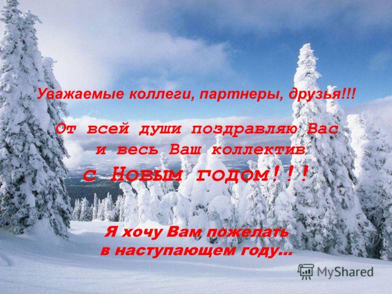 Уважаемые коллеги, партнеры, друзья!!! От всей души поздравляю Вас и весь Ваш коллектив с Новым годом!!! Я хочу Вам пожелать в наступающем году...